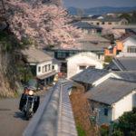 CD125Tとスーパーカブ110で行く福岡・大分 お花見ツーリング その⑧