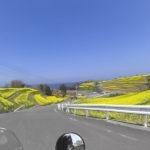CD125Tとスーパーカブ110で行く福岡・大分 お花見ツーリング その⑩