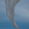 CD125T 芦屋基地航空祭に行ってきました その④ 最終話 ブルーインパルス編