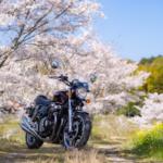 CB1100  通勤路の桜並木 平成最後の桜とオートバイ その②