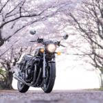 CB1100  ありがとう 平成最後の桜とオートバイ その③ 最終話