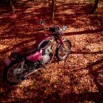 偶然見つけた紅葉は素晴らしかった CD125T 秋の紅葉ツーリング その⑥